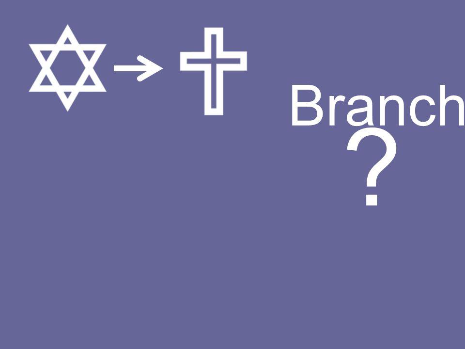 Branch ?