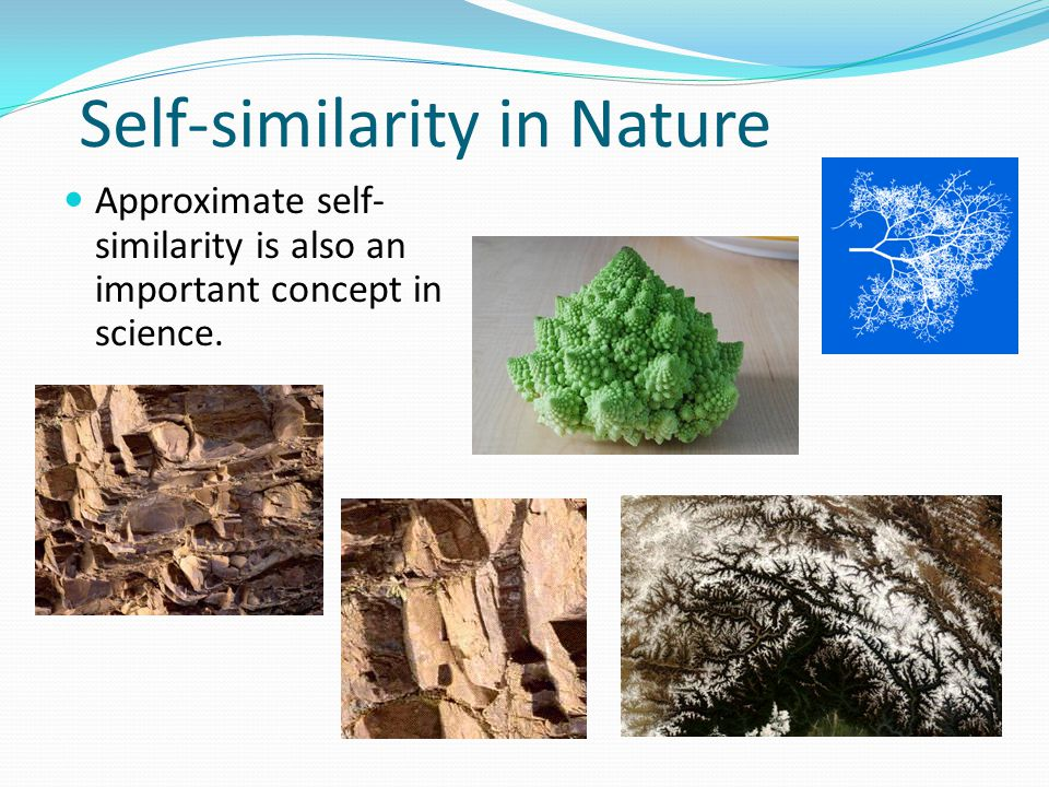 Self-similarity in Nature Approximate self- similarity is also an important concept in science.