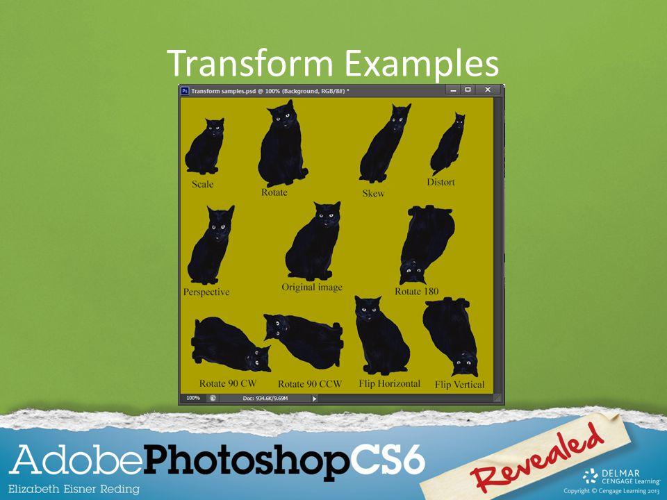 Transform Examples