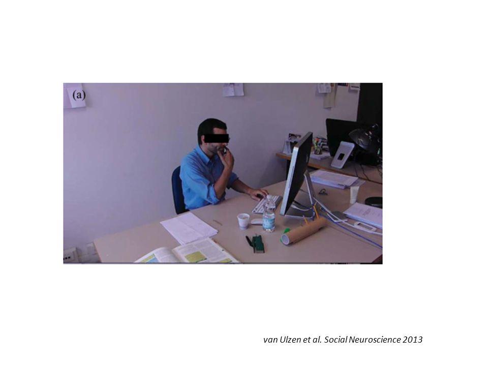 van Ulzen et al. Social Neuroscience 2013