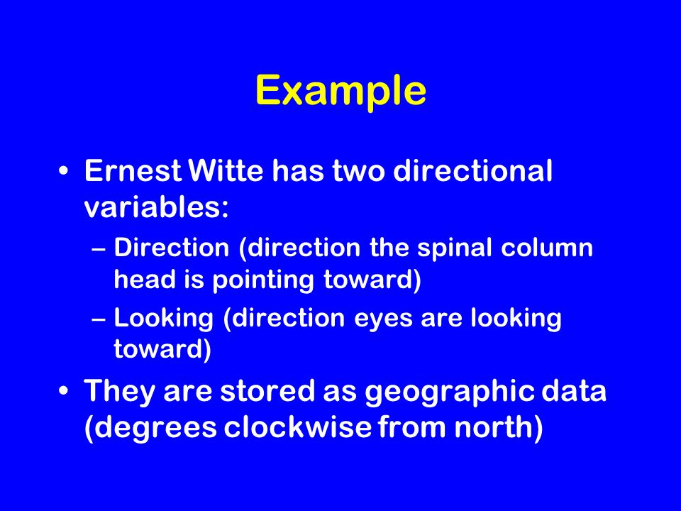 Example Ernest Witte has two directional variables: –Direction (direction the spinal column head is pointing toward) –Looking (direction eyes are looking toward) They are stored as geographic data (degrees clockwise from north)
