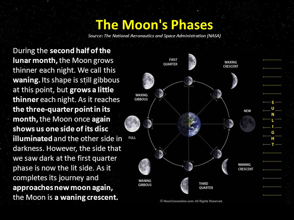 The Moon s Phases Source: The National Aeronautics and Space Administration (NASA) During the second half of the lunar month, the Moon grows thinner each night.