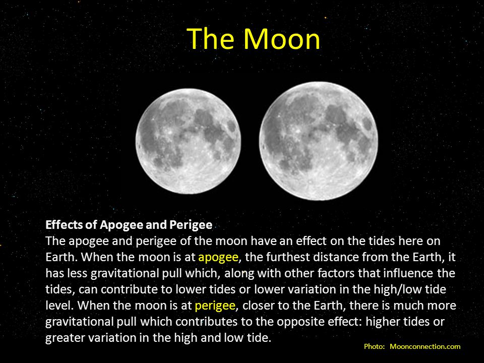 The Moon Effects of Apogee and Perigee The apogee and perigee of the moon have an effect on the tides here on Earth.