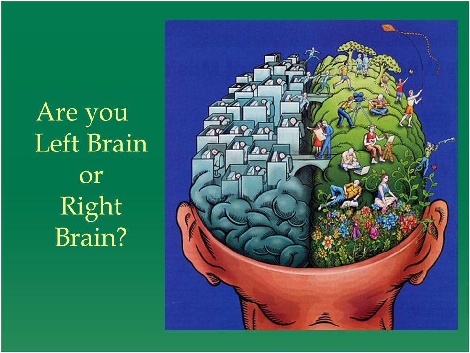 Are you Left Brain or Right Brain?