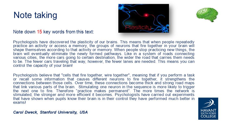 Note down 15 key words from this text: Psychologists have discovered the plasticity of our brains.