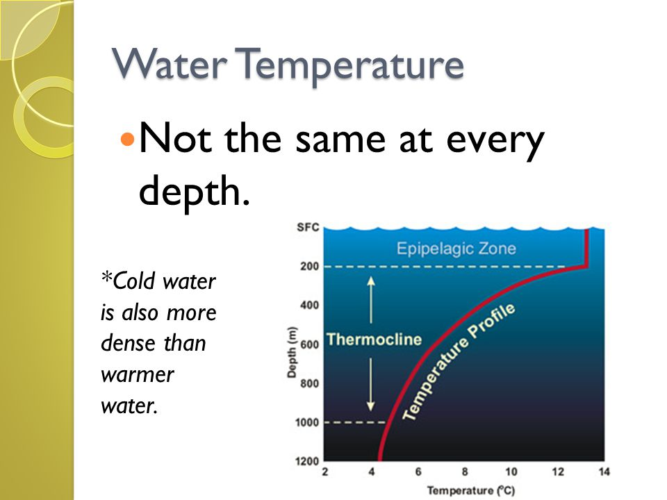 Water Temperature Not the same at every depth. *Cold water is also more dense than warmer water.