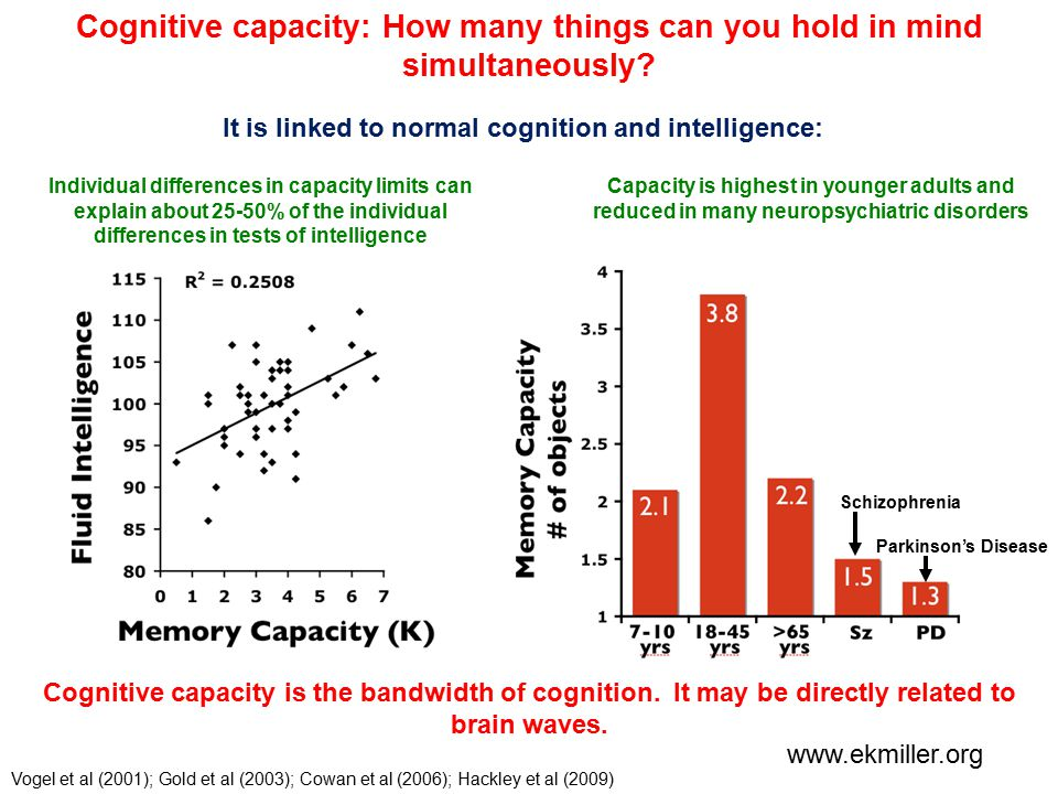 Cognitive capacity: How many things can you hold in mind simultaneously.