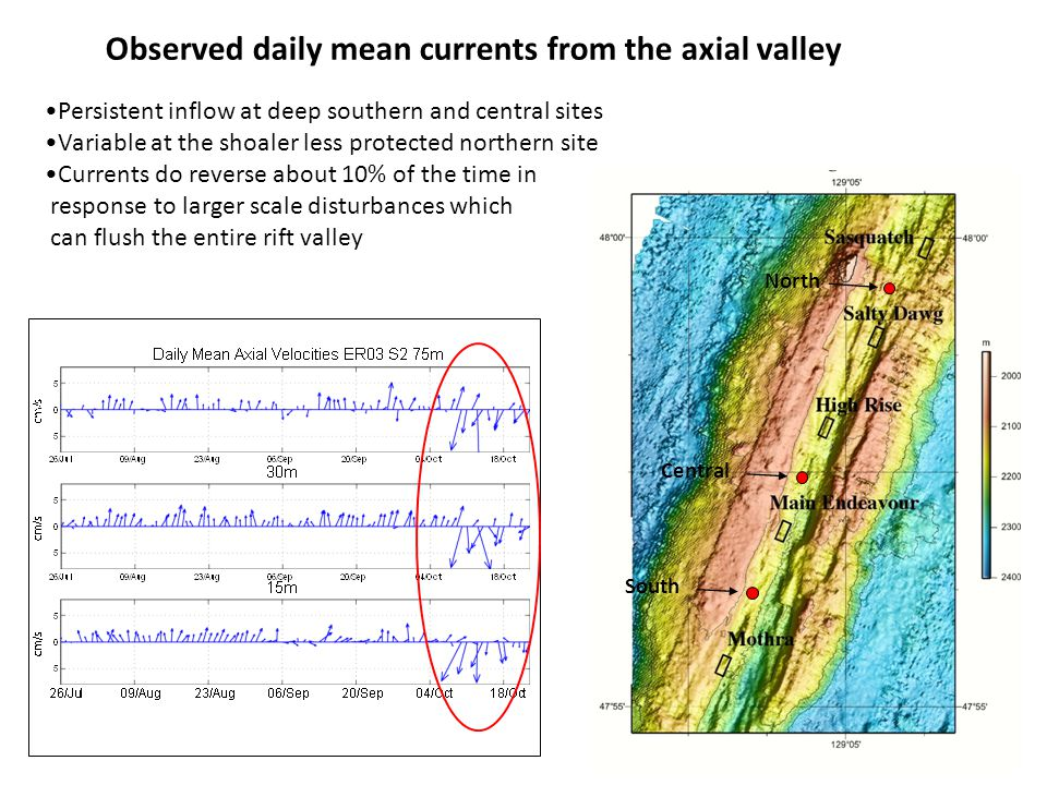 Observed daily mean currents from the axial valley North Central South Persistent inflow at deep southern and central sites Variable at the shoaler less protected northern site Currents do reverse about 10% of the time in response to larger scale disturbances which can flush the entire rift valley