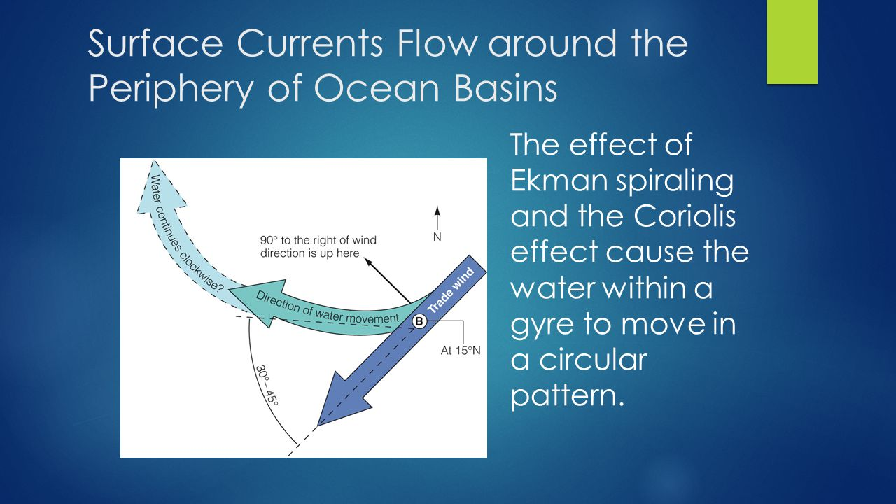 The effect of Ekman spiraling and the Coriolis effect cause the water within a gyre to move in a circular pattern.