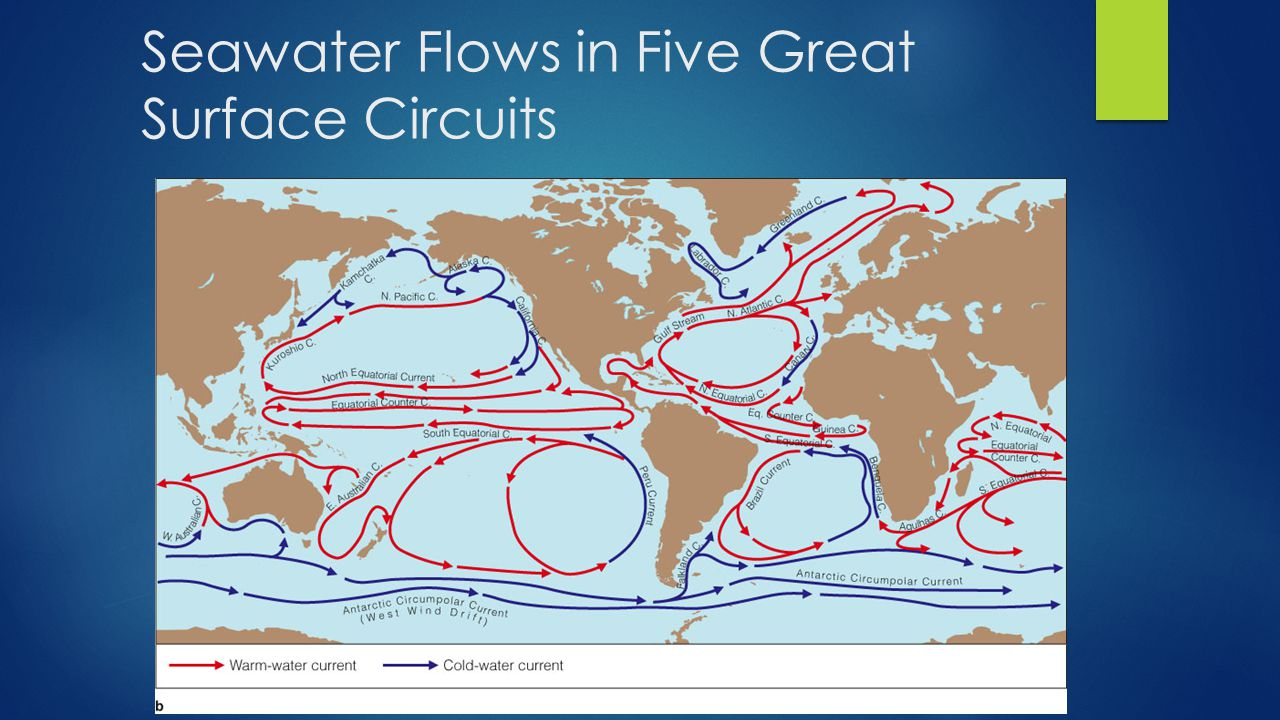 Seawater Flows in Five Great Surface Circuits