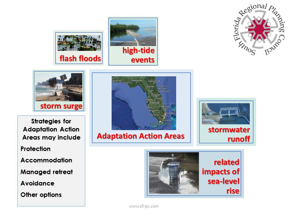 Strategies for Adaptation Action Areas may include ProtectionAccommodation Managed retreat Avoidance Other options