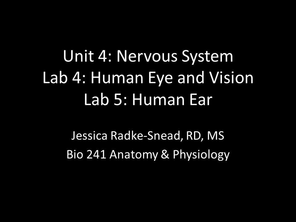 Unit 4: Nervous System Lab 4: Human Eye and Vision Lab 5: Human Ear Jessica Radke-Snead, RD, MS Bio 241 Anatomy & Physiology