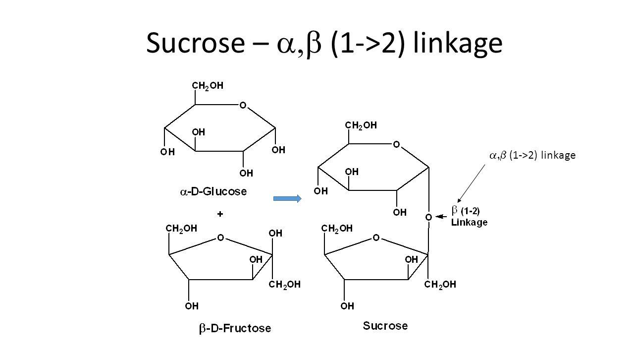Sucrose –  (1->2) linkage  (1->2) linkage