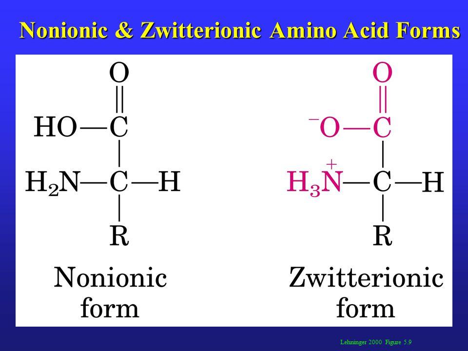 Lehninger 2000 Figure 5.9 Nonionic & Zwitterionic Amino Acid Forms