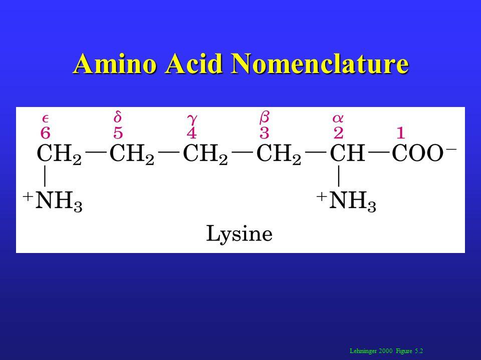 Amino Acid Nomenclature Lehninger 2000 Figure 5.2
