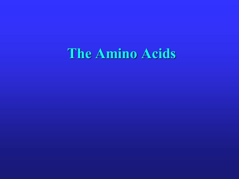 The Amino Acids