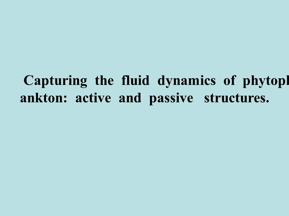 Capturing the fluid dynamics of phytopl ankton: active and passive structures.