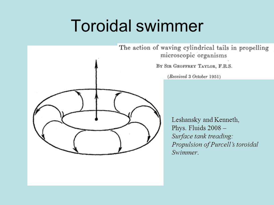 Toroidal swimmer Leshansky and Kenneth, Phys. Fluids 2008 – Surface tank treading: Propulsion of Purcell's toroidal Swimmer.