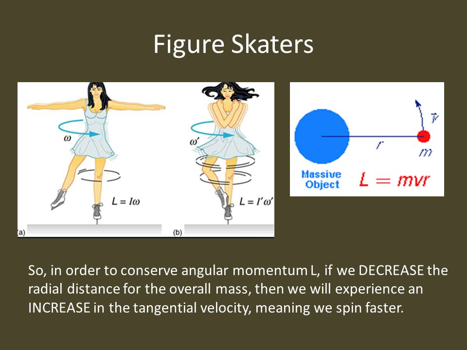 Figure Skaters So, in order to conserve angular momentum L, if we DECREASE the radial distance for the overall mass, then we will experience an INCREASE in the tangential velocity, meaning we spin faster.