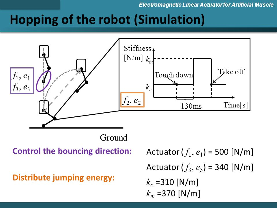 Hopping of the robot (Simulation) Electromagnetic Linear Actuator for Artificial Muscle Ground kckc Touch down 130ms Stiffness [N/m] kmkm Time[s] Take off f 1, e 1 f 3, e 3 f 2, e 2 Control the bouncing direction: Distribute jumping energy: Actuator ( f 1, e 1 ) = 500 [N/m] Actuator ( f 3, e 3 ) = 340 [N/m] k c =310 [N/m] k m =370 [N/m]