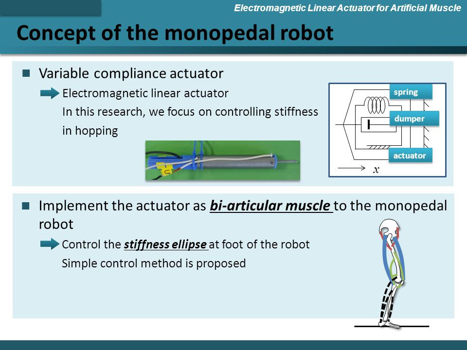 Concept of the monopedal robot Electromagnetic Linear Actuator for Artificial Muscle Variable compliance actuator Electromagnetic linear actuator In this research, we focus on controlling stiffness in hopping x spring dumper actuator Implement the actuator as bi-articular muscle to the monopedal robot Control the stiffness ellipse at foot of the robot Simple control method is proposed