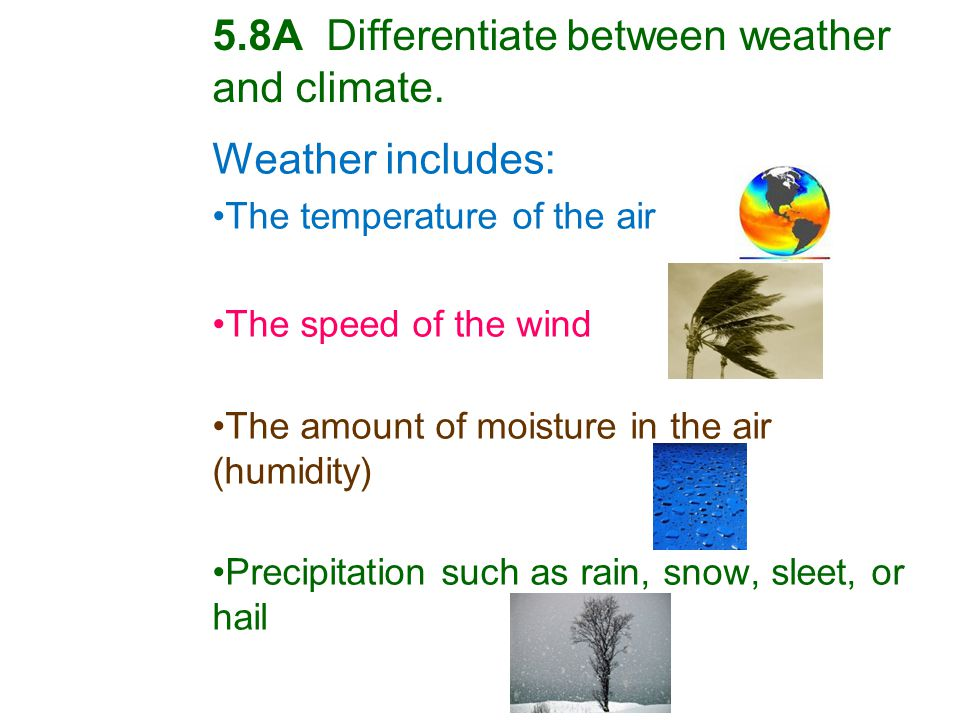 Weather includes: The temperature of the air The speed of the wind The amount of moisture in the air (humidity) Precipitation such as rain, snow, sleet, or hail 5.8A Differentiate between weather and climate.