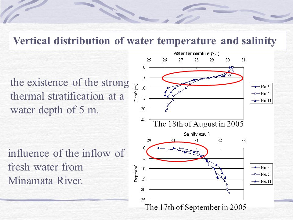 the existence of the strong thermal stratification at a water depth of 5 m. influence of the inflow of fresh water from Minamata River. Vertical distr