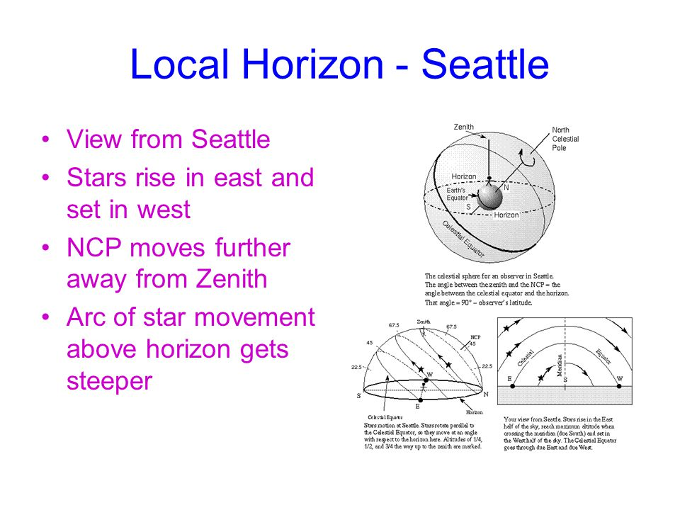 Local Horizon - Seattle View from Seattle Stars rise in east and set in west NCP moves further away from Zenith Arc of star movement above horizon gets steeper