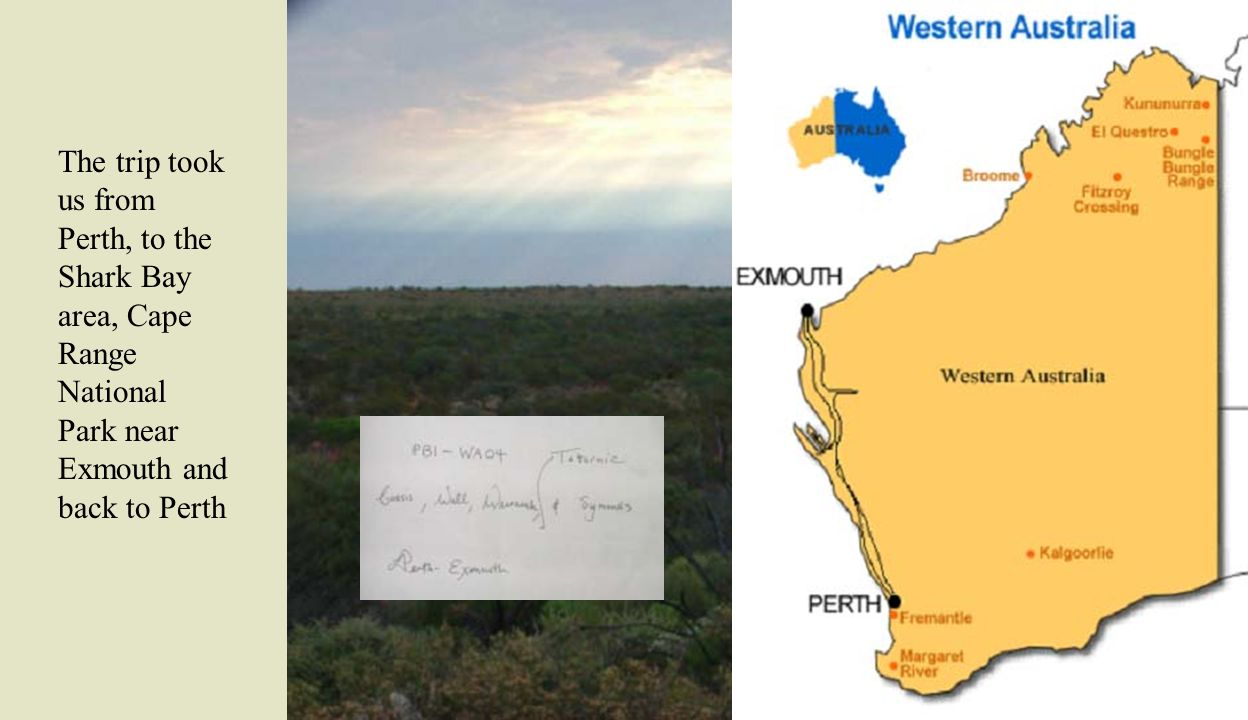 The trip took us from Perth, to the Shark Bay area, Cape Range National Park near Exmouth and back to Perth