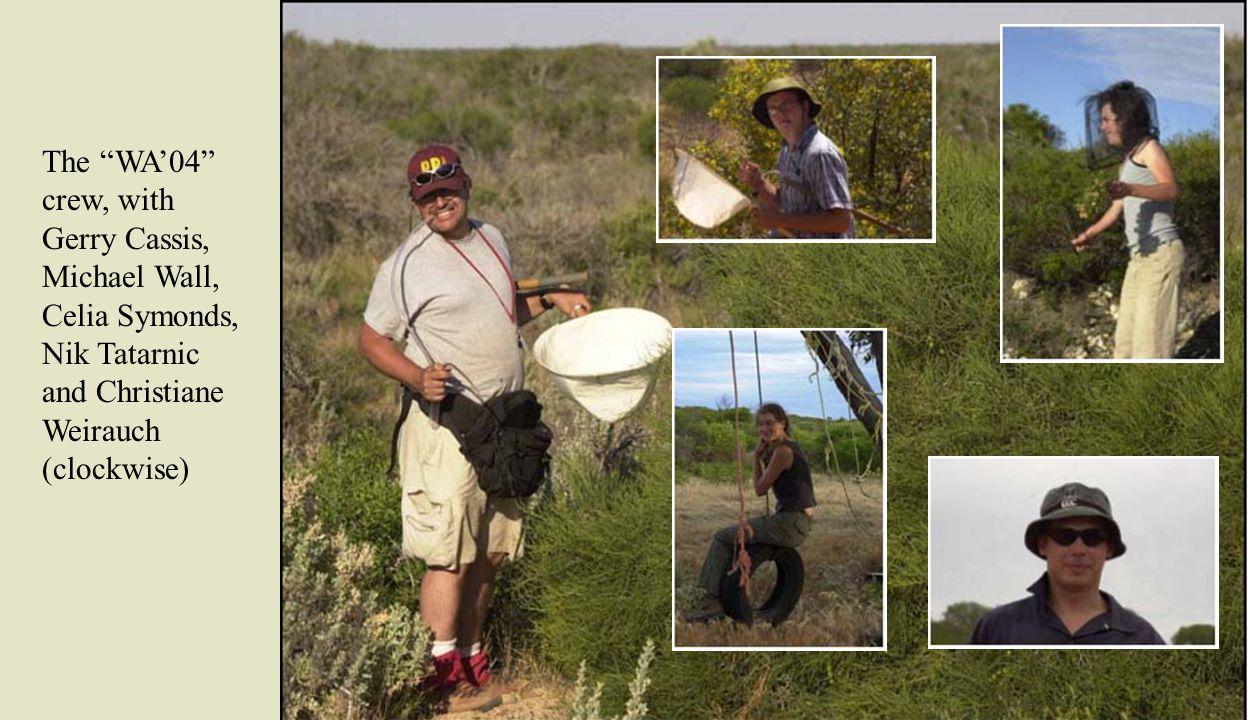 The habitats sampled comprised coastal dune vegetation as at Flat Rocks Beach, south of Geraldton ….