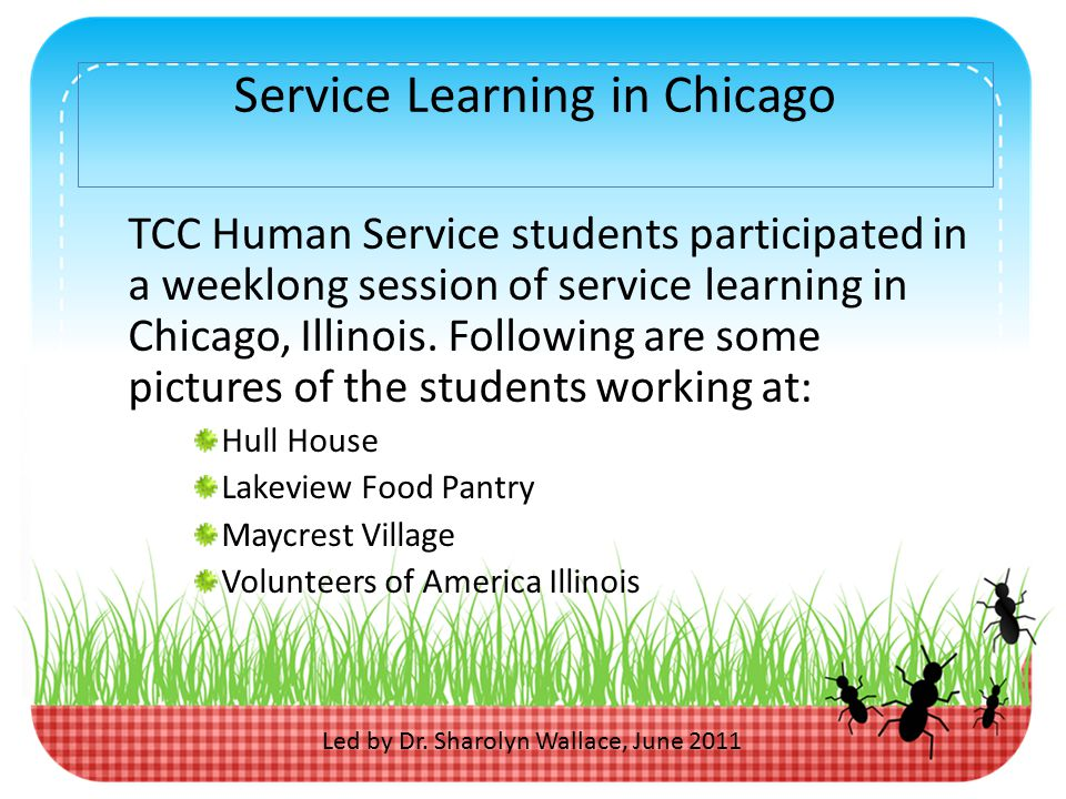 Service Learning in Chicago TCC Human Service students participated in a weeklong session of service learning in Chicago, Illinois.