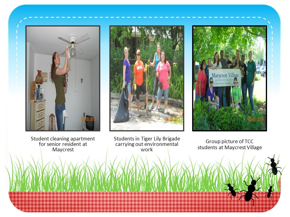 Student cleaning apartment for senior resident at Maycrest Students in Tiger Lily Brigade carrying out environmental work Group picture of TCC students at Maycrest Village