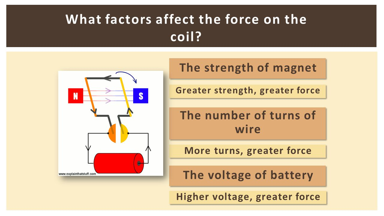 What factors affect the force on the coil? The strength of magnet The number of turns of wire The number of turns of wire The voltage of battery Great