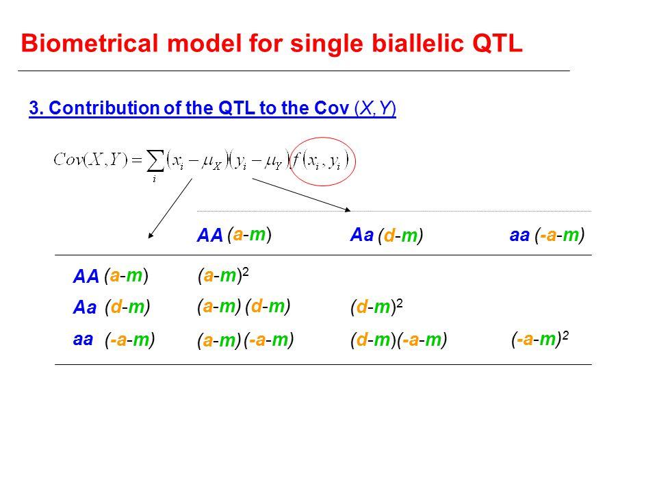 Biometrical model for single biallelic QTL AA Aa aa AA Aaaa (a-m)(a-m) (d-m)(d-m) (-a-m) (a-m)(a-m) (d-m)(d-m) (a-m)2(a-m)2 (a-m)(a-m) (d-m)(d-m) (a-m)(a-m) (d-m)2(d-m)2 (d-m)(d-m) (-a-m) 2 3.