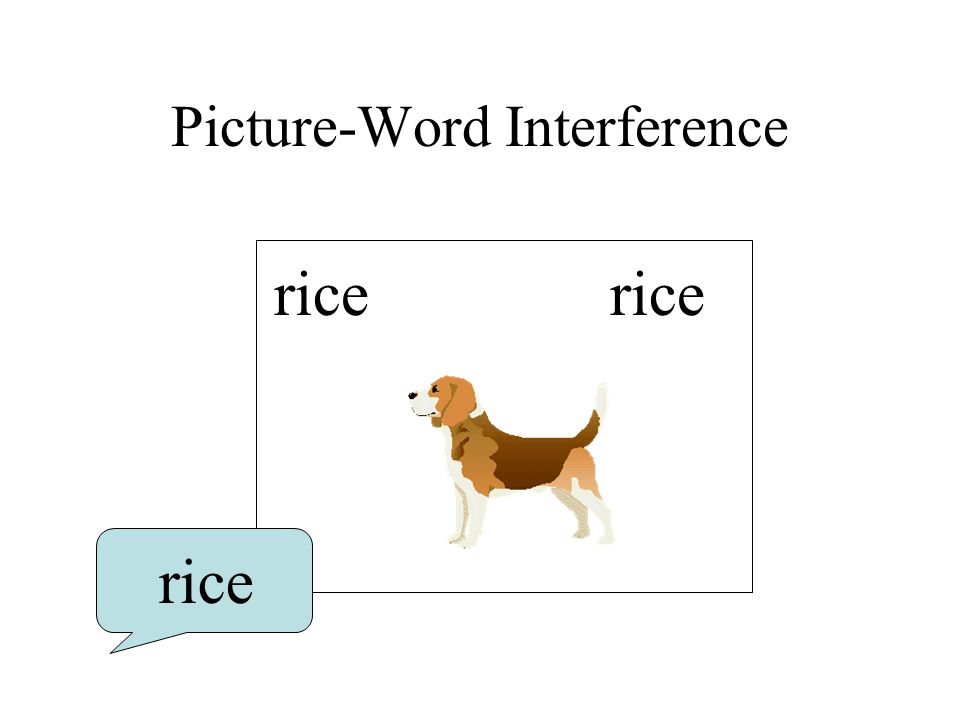 Picture-Word Interference rice