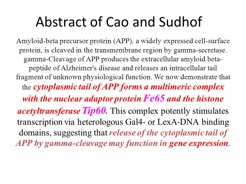 What is the physiological role of APP. Cao X, Sudhof TC.