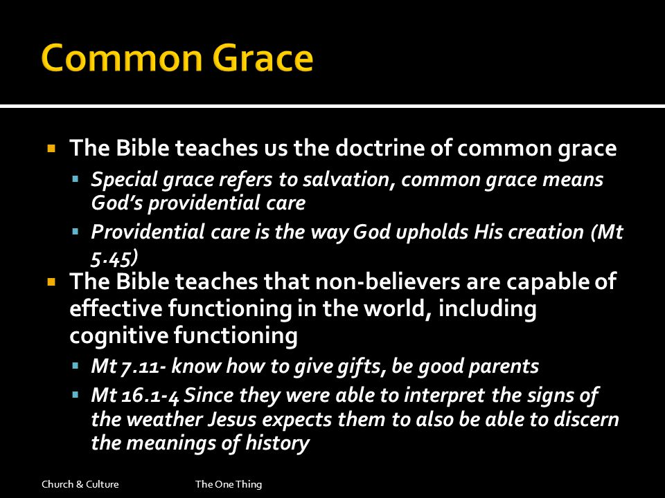  The Bible teaches us the doctrine of common grace  Special grace refers to salvation, common grace means God's providential care  Providential care is the way God upholds His creation (Mt 5.45)  The Bible teaches that non-believers are capable of effective functioning in the world, including cognitive functioning  Mt 7.11- know how to give gifts, be good parents  Mt 16.1-4 Since they were able to interpret the signs of the weather Jesus expects them to also be able to discern the meanings of history Church & CultureThe One Thing