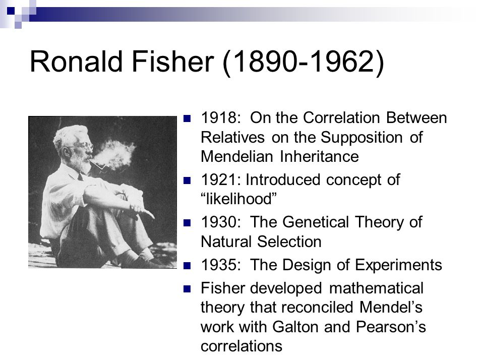 Ronald Fisher (1890-1962) 1918: On the Correlation Between Relatives on the Supposition of Mendelian Inheritance 1921: Introduced concept of likelihood 1930: The Genetical Theory of Natural Selection 1935: The Design of Experiments Fisher developed mathematical theory that reconciled Mendel's work with Galton and Pearson's correlations