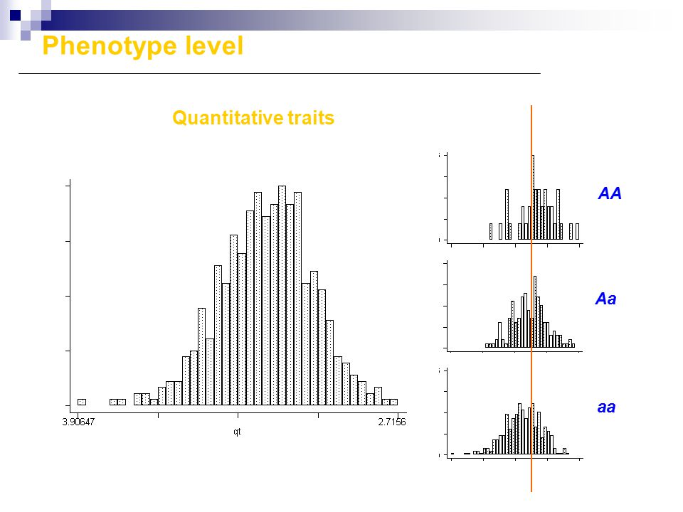 Quantitative traits AA Aa aa Phenotype level