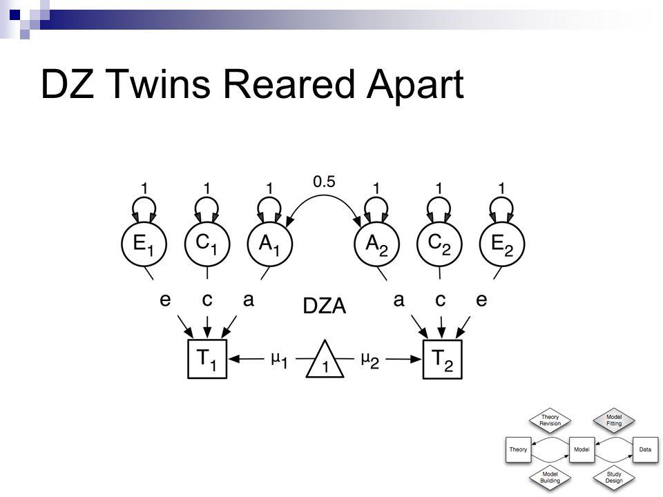 DZ Twins Reared Apart