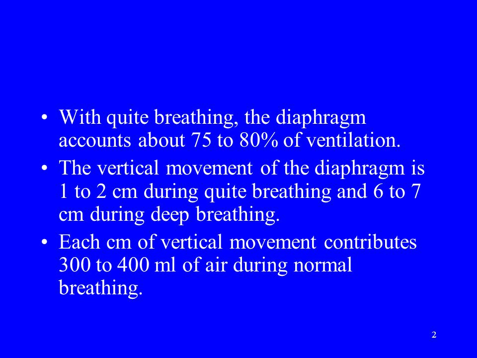 2 With quite breathing, the diaphragm accounts about 75 to 80% of ventilation.