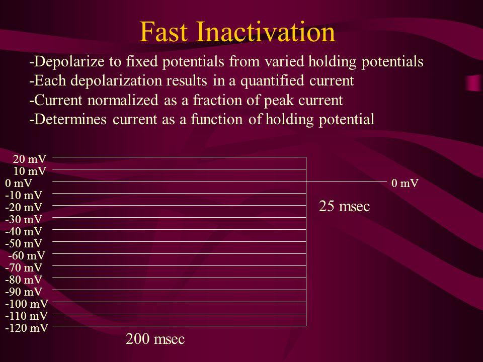 Fast Inactivation -50 mV -60 mV -70 mV -80 mV -90 mV -100 mV -110 mV -120 mV -40 mV -30 mV -20 mV -10 mV 0 mV 200 msec 10 mV 20 mV 25 msec -Depolarize