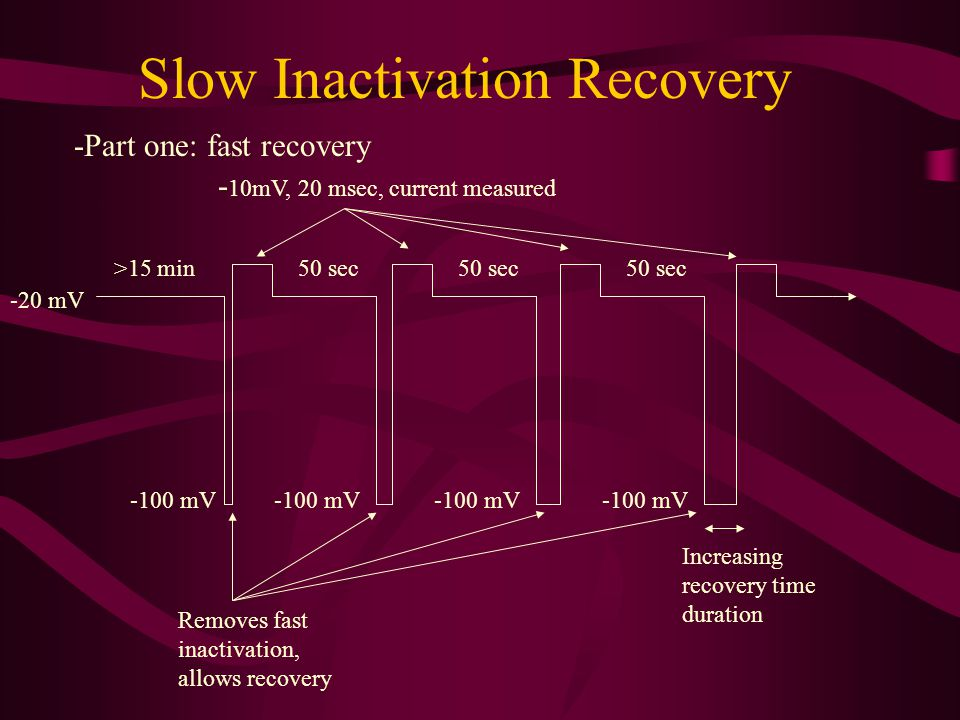 Slow Inactivation Recovery -20 mV >15 min -100 mV 50 sec -Part one: fast recovery Increasing recovery time duration 50 sec - 10mV, 20 msec, current me