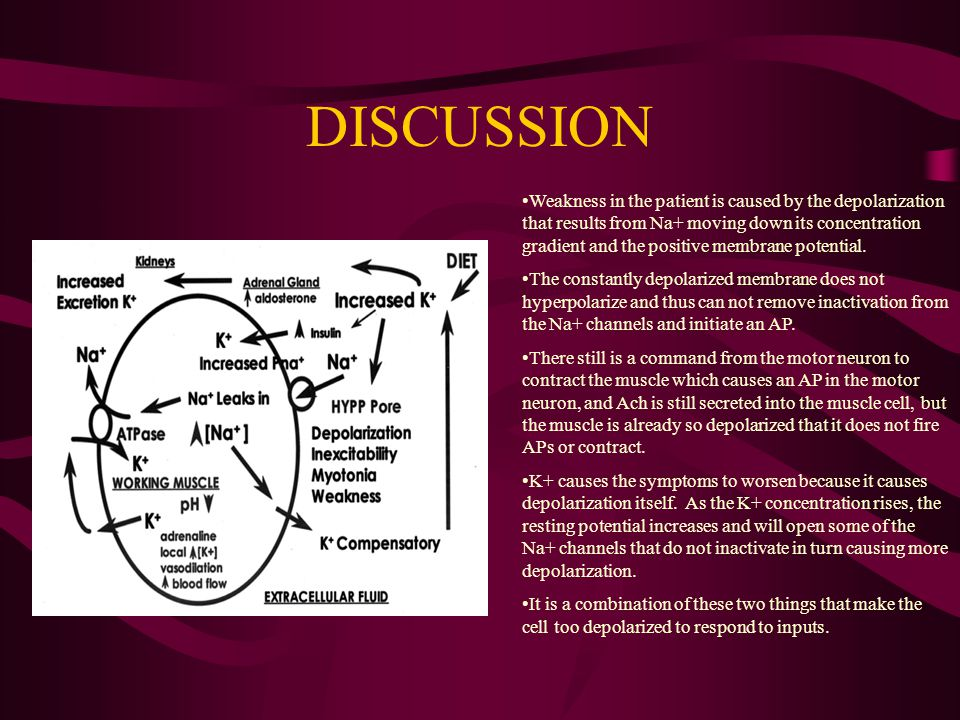 DISCUSSION Weakness in the patient is caused by the depolarization that results from Na+ moving down its concentration gradient and the positive membr