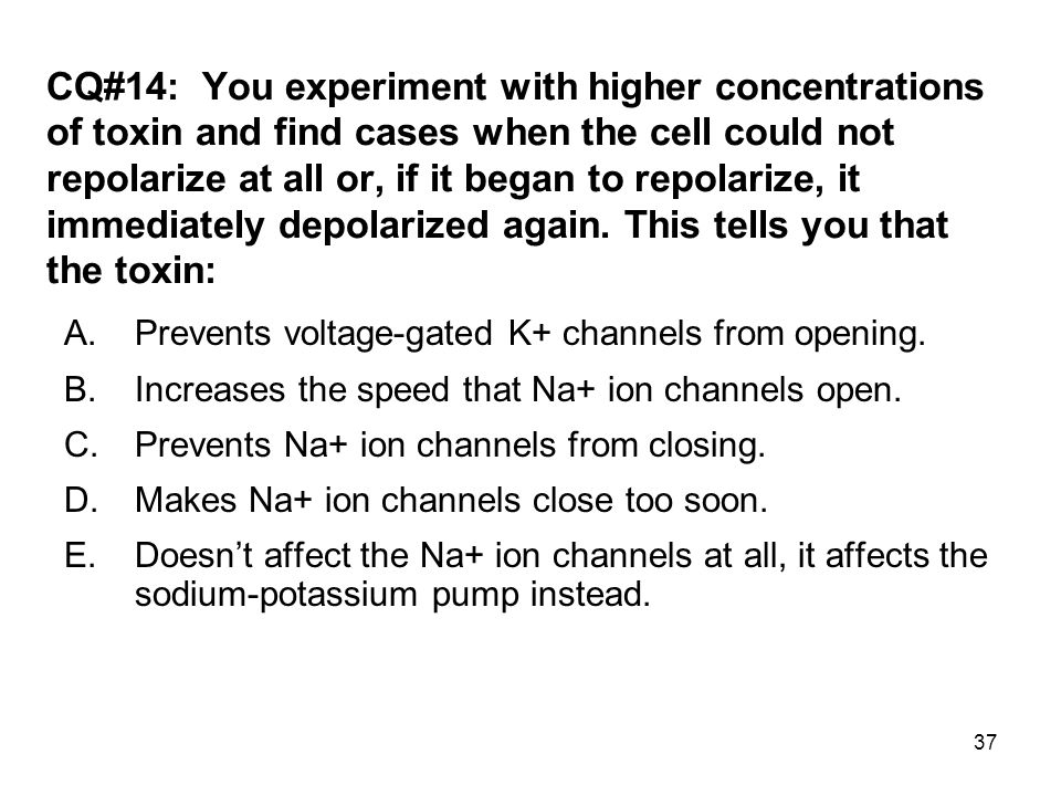 37 CQ#14: You experiment with higher concentrations of toxin and find cases when the cell could not repolarize at all or, if it began to repolarize, i