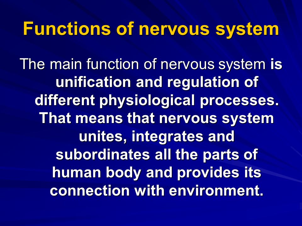 Functions of nervous system The main function of nervous system is unification and regulation of different physiological processes.