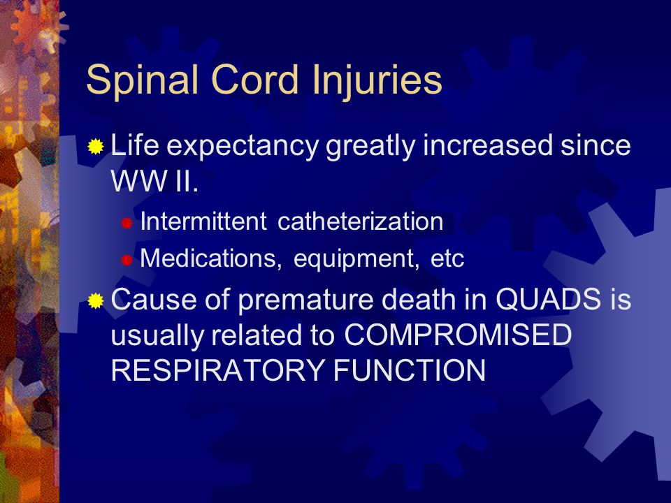 Degree of Injury  Complete transection  Total paralysis and loss of sensory and motor function although arms or rarely completely paralyzed  Incomplete (partial transection)  Mixed loss of voluntary motor activity and sensation  Four patterns or syndromes