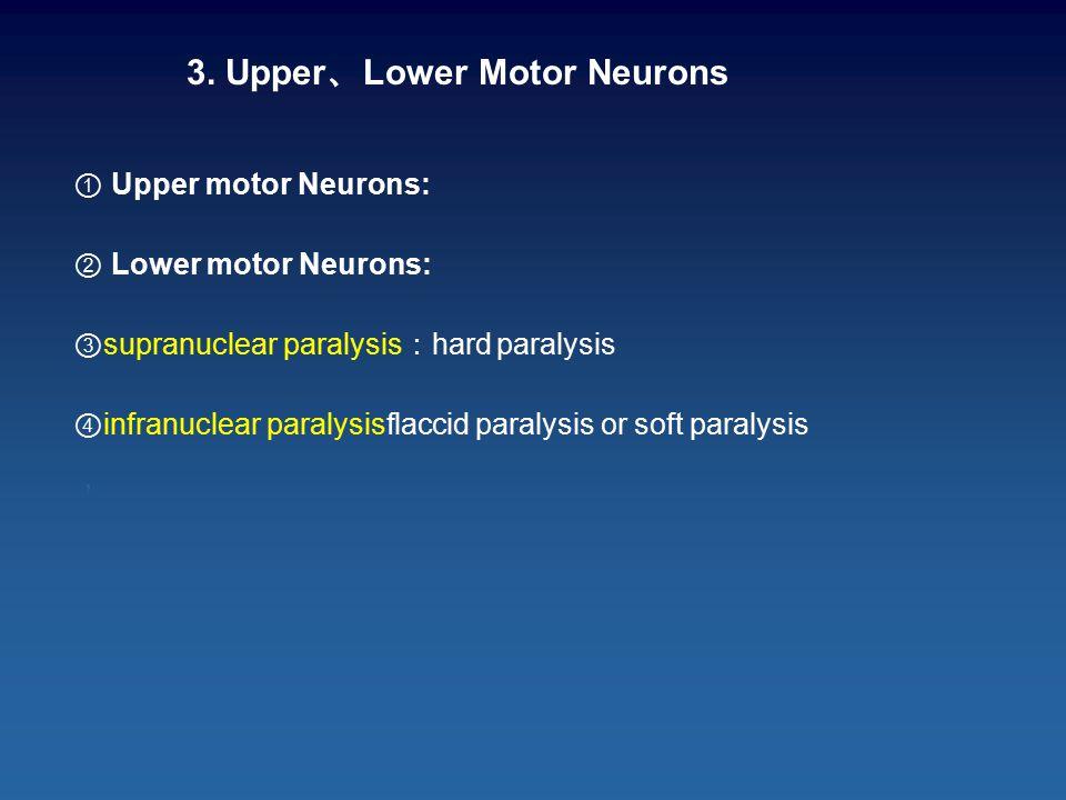3. Upper 、 Lower Motor Neurons ① Upper motor Neurons: ② Lower motor Neurons: ③ supranuclear paralysis : hard paralysis ④ infranuclear paralysisflaccid