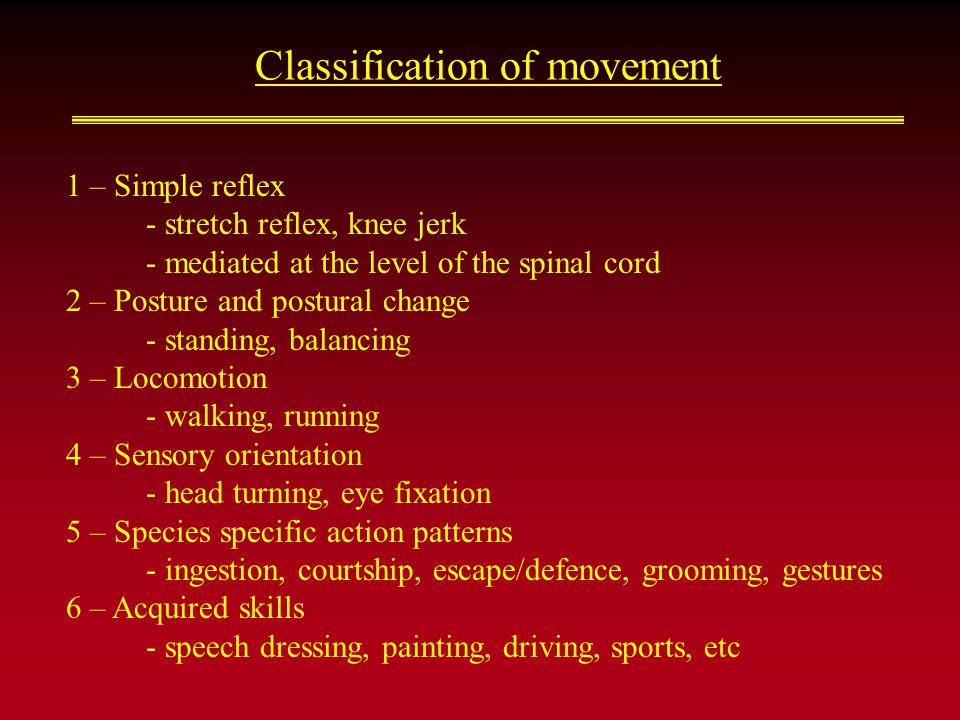 Classification of movement 1 – Simple reflex - stretch reflex, knee jerk - mediated at the level of the spinal cord 2 – Posture and postural change - standing, balancing 3 – Locomotion - walking, running 4 – Sensory orientation - head turning, eye fixation 5 – Species specific action patterns - ingestion, courtship, escape/defence, grooming, gestures 6 – Acquired skills - speech dressing, painting, driving, sports, etc