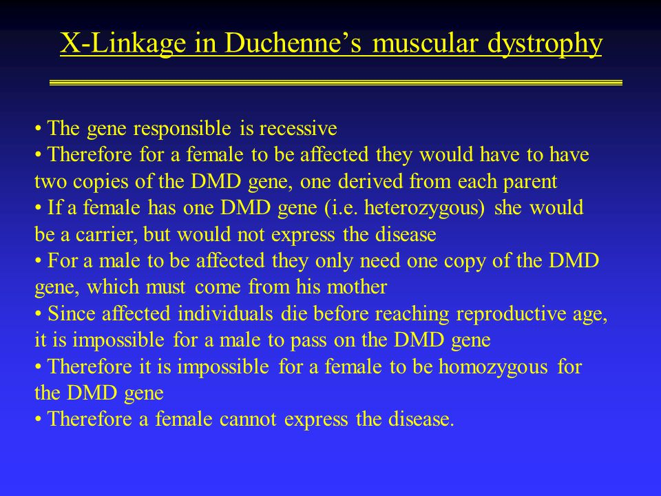 X-Linkage in Duchenne's muscular dystrophy The gene responsible is recessive Therefore for a female to be affected they would have to have two copies